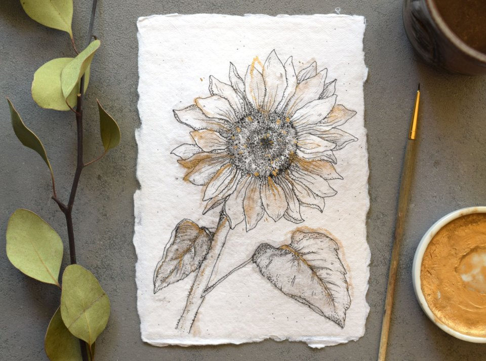 How to Draw Flowers Part 3: Sunflower