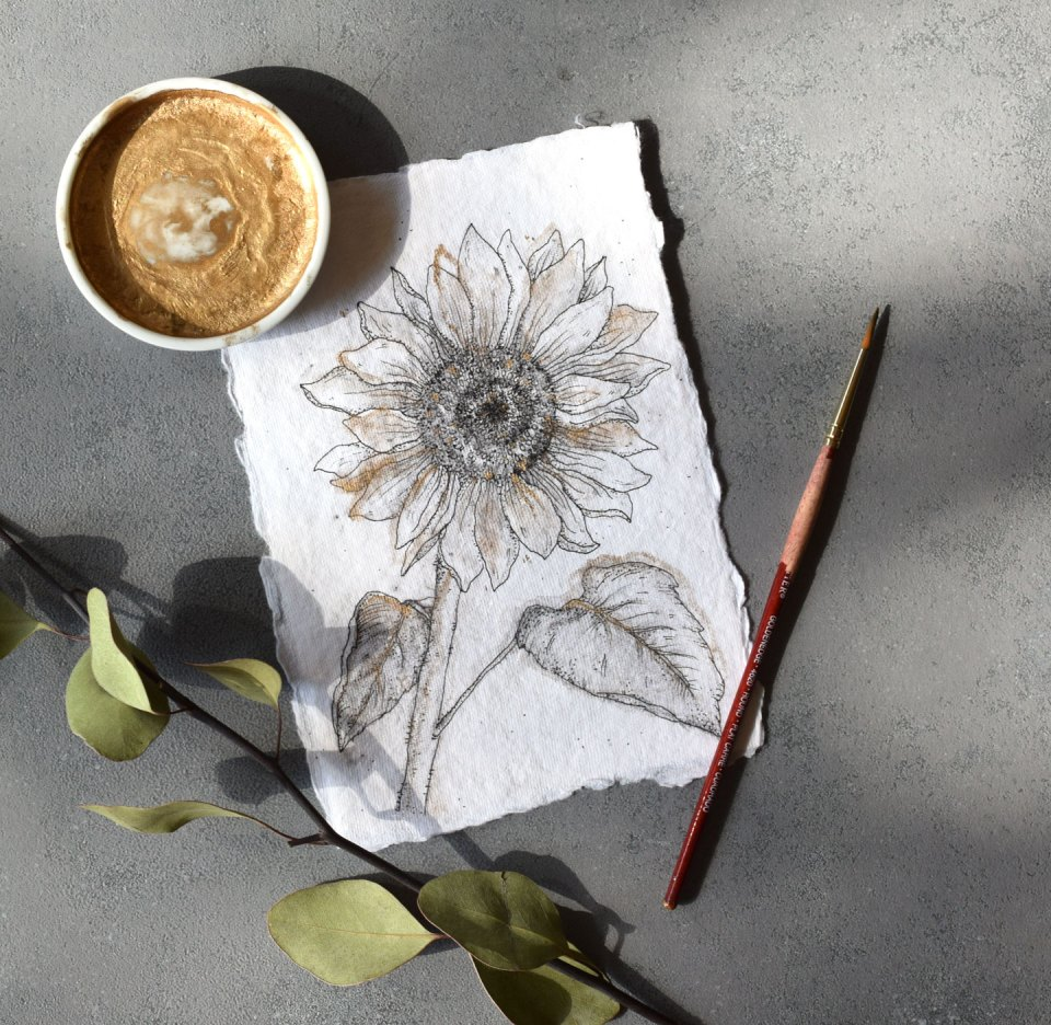 How to Draw Flowers Part 3: Sunflower | The Postman's Knock