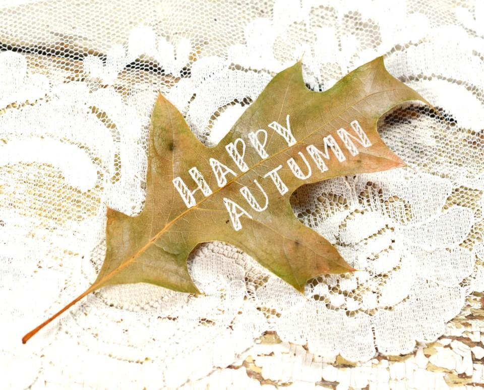 Step 1: Happy Autumn Leaf Motif
