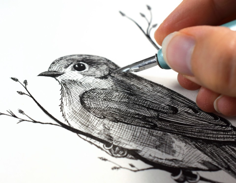 The Beginner's Guide to Crosshatching