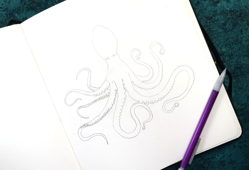 Octopus Calligraphy Art Outline