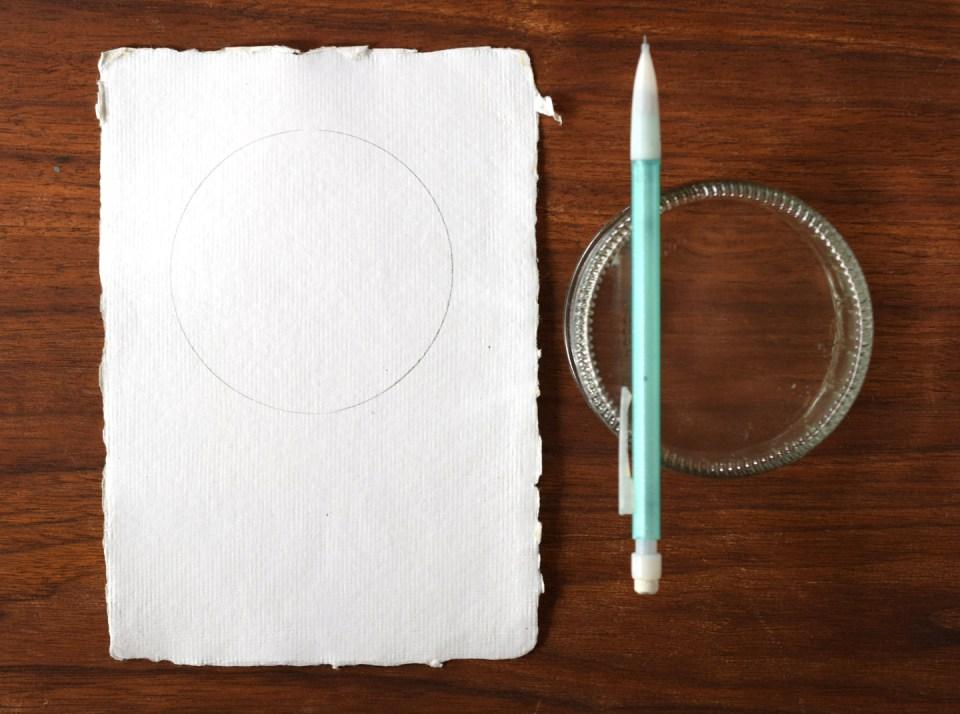 Hydrangea Illustration Pencil Draft