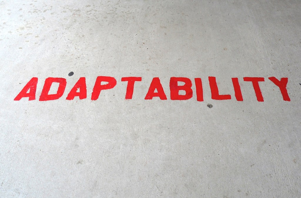 Adaptability – Developing Your Capability to Thrive