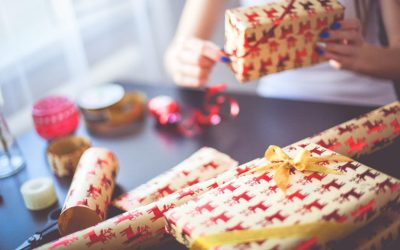 Holiday Gift Ideas from The Potentiality
