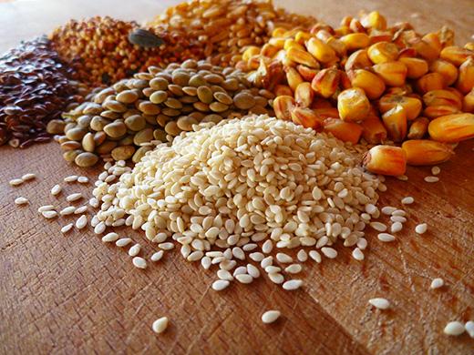 whole-grain-17-protein-chicken-feed-formula