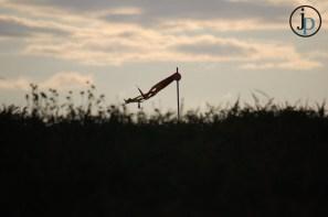 Wind Kite