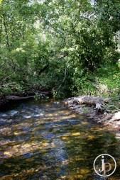Sourdough Creek