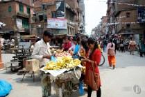 Nepal (8)