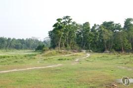 Chitwan (10)