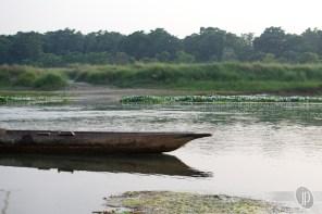 Chitwan (15)