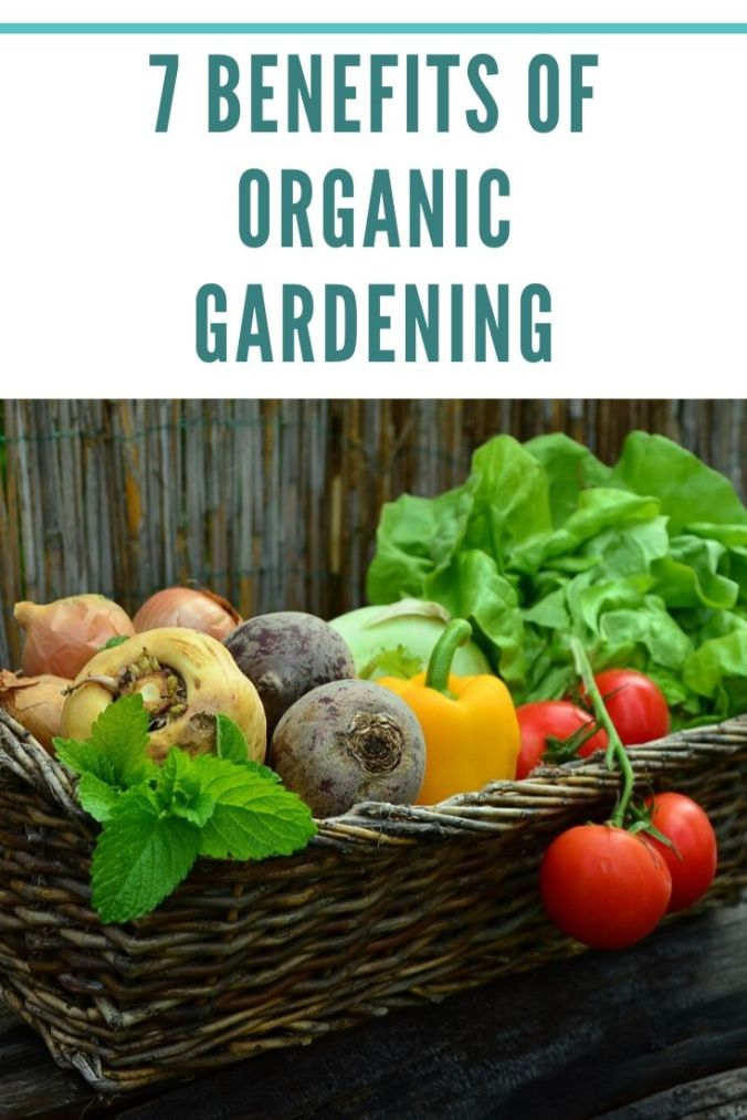 7 benefits of organic gardening jpg
