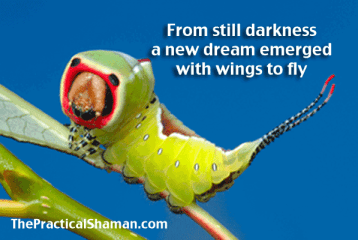 From darkness; a new dream emerged