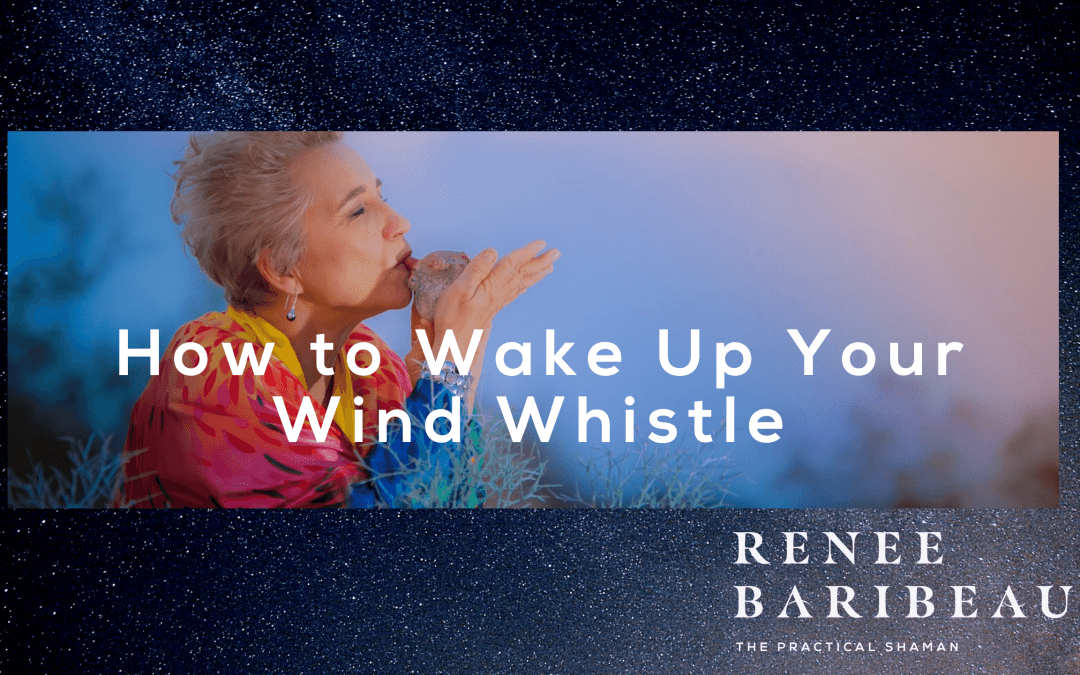 How to Wake Up Your Wind Whistle