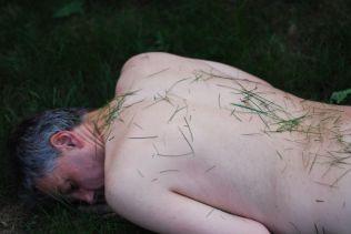 PS Grass (4)