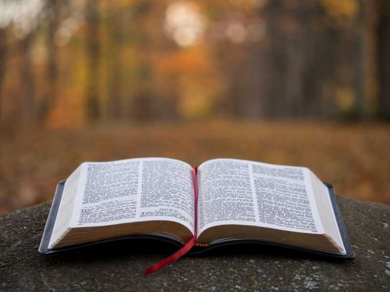 God's will in Decision Making