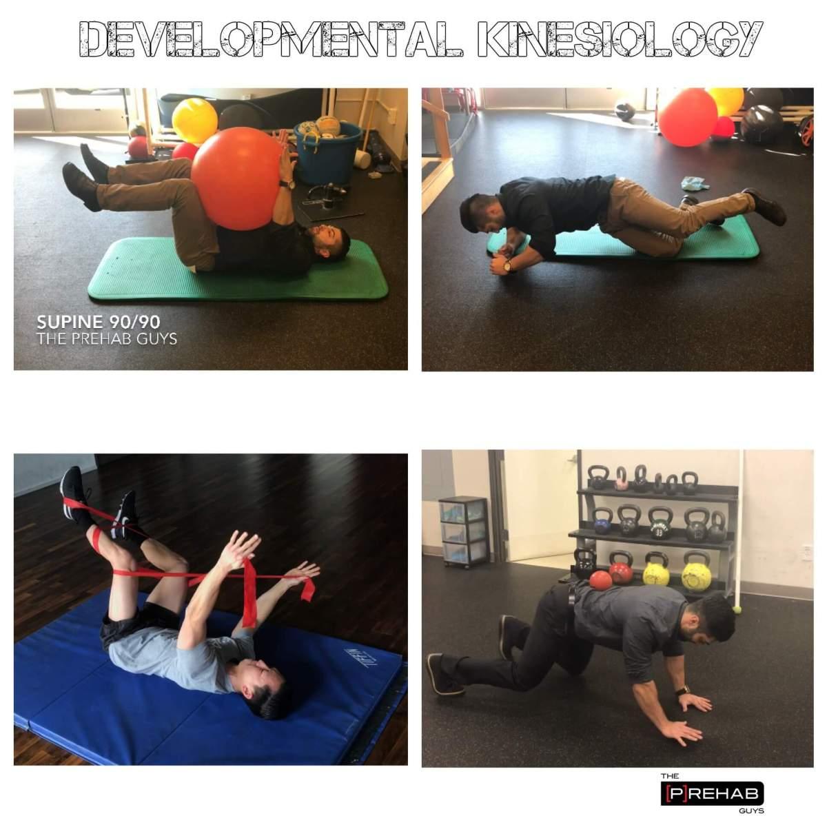 Developmental Kinesiology