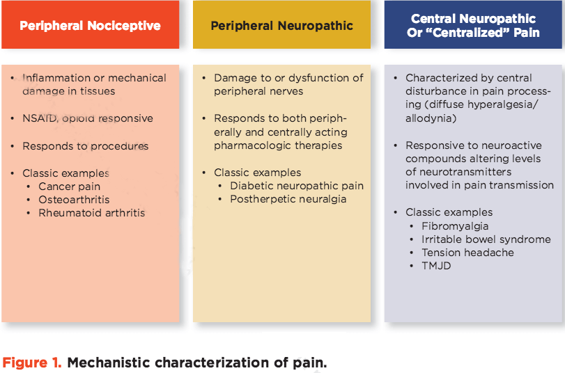Pain Science types of pain the prehab guys