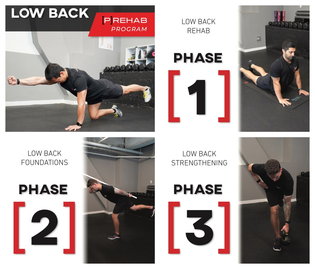 low back prehab program
