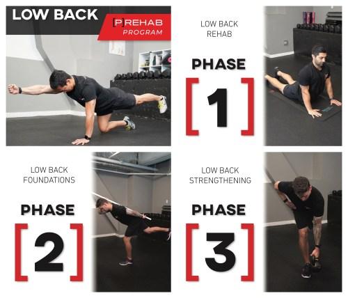 low back prehab program pallof press exercises the prehab guys