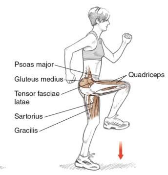 how to stretch hip flexors prehab guys