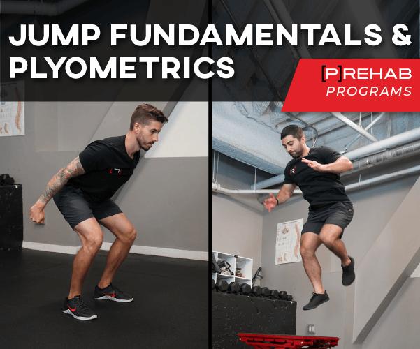 jumpers knee exercises plyometrics program prehab guys