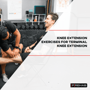 knee extension machine exercises prehab guys