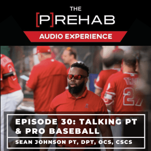 Talking PT & Pro Baseball With Sean Johnson - Image