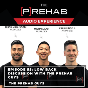 Low Back Discussion With The [P]Rehab Guys - Image
