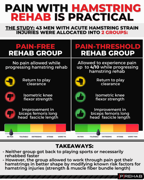 pain with hamstring rehab is practical how to warm up your hamstrings the prehab guys