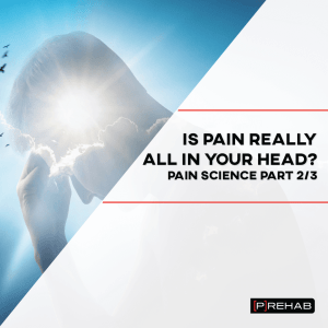 is pain all in your head the prehab guys