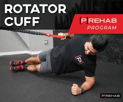 rotator cuff prehab program the prehab guys