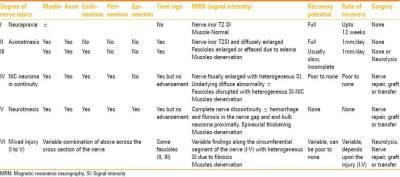 nerve injury classification the prehab guys