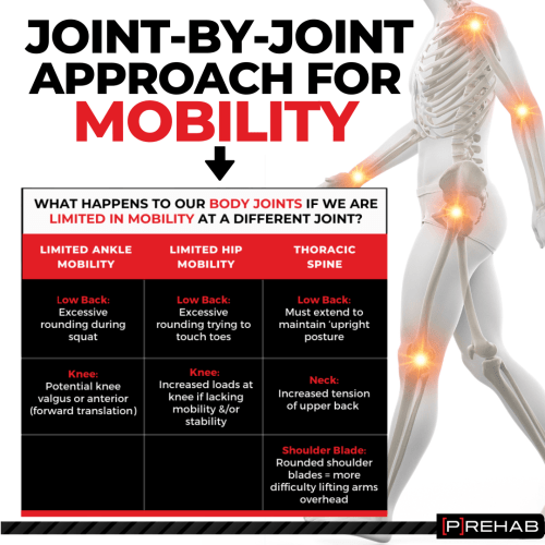 joint-by-joint approach the prehab guys