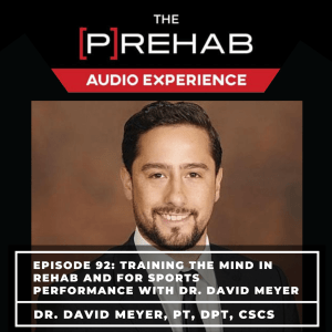 Training The Mind In Rehab and For Sports Performance With Dr. David Meyer - Image