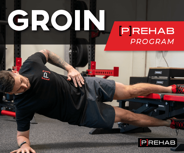 groin prehab program advanced groin training the prehab guys