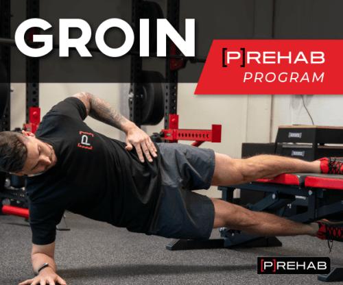groin prehab program advanced groin training the prehab guys