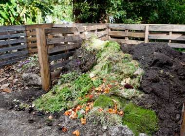 When garden composting caught on in the early 1980s, I thought back to my mother sending us kids to the garden every night to bury the day's apple cores, carrot tops and hickory nut shells. It seemed Mom was ahead of her time.