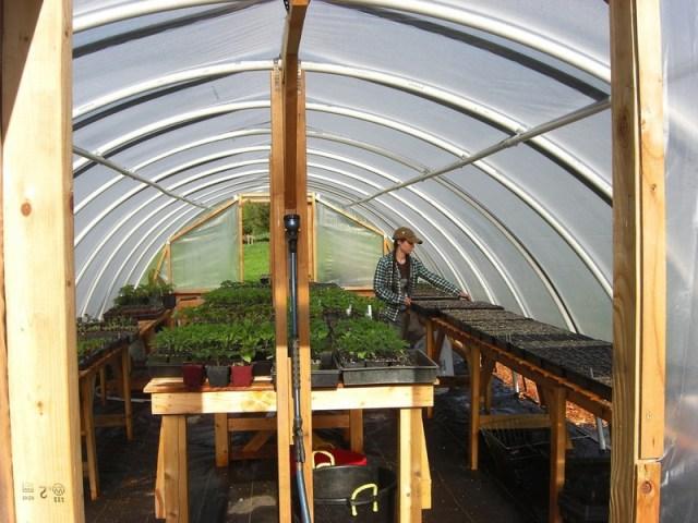 DIY_Hoop_Greenhouse11