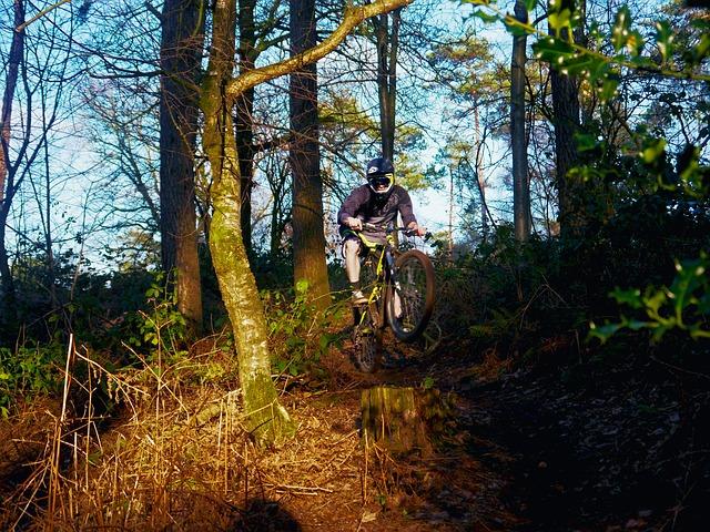 mountain-bike-539473_640