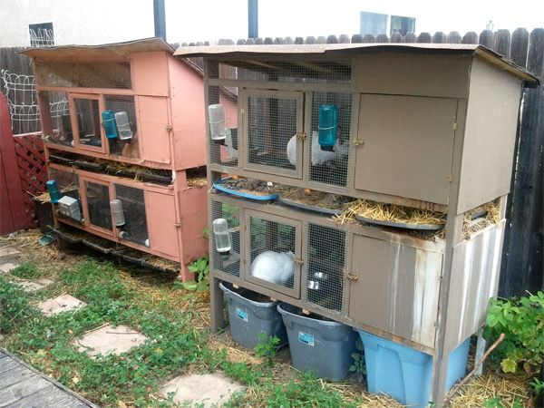 Increasing efficiency can be as fast and simple as putting coops and hutches over compost and worm bins to decrease some of the back-and-forth steps of moving manure to those systems and being able to check levels and moisture and harvest worms at the same time we care for other livestock.