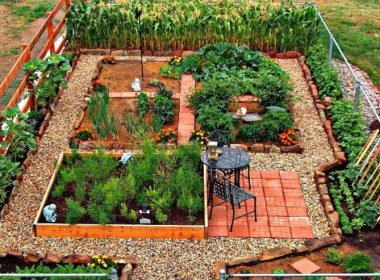 Editors Note: An article on gardening from Julia Dacy to The Prepper Journal. Some basics for the new gardeners out there. As always, if you have information for Preppers that you would like to share and be entered into the Prepper Writing Contest with a chance to win one of three Amazon Gift Cards with the top prize being a $300 card to purchase your own prepping supplies!