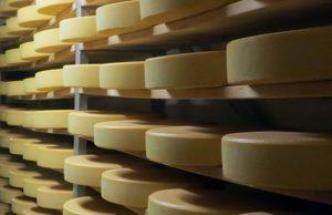 Did you know cheese has a long shelf life?