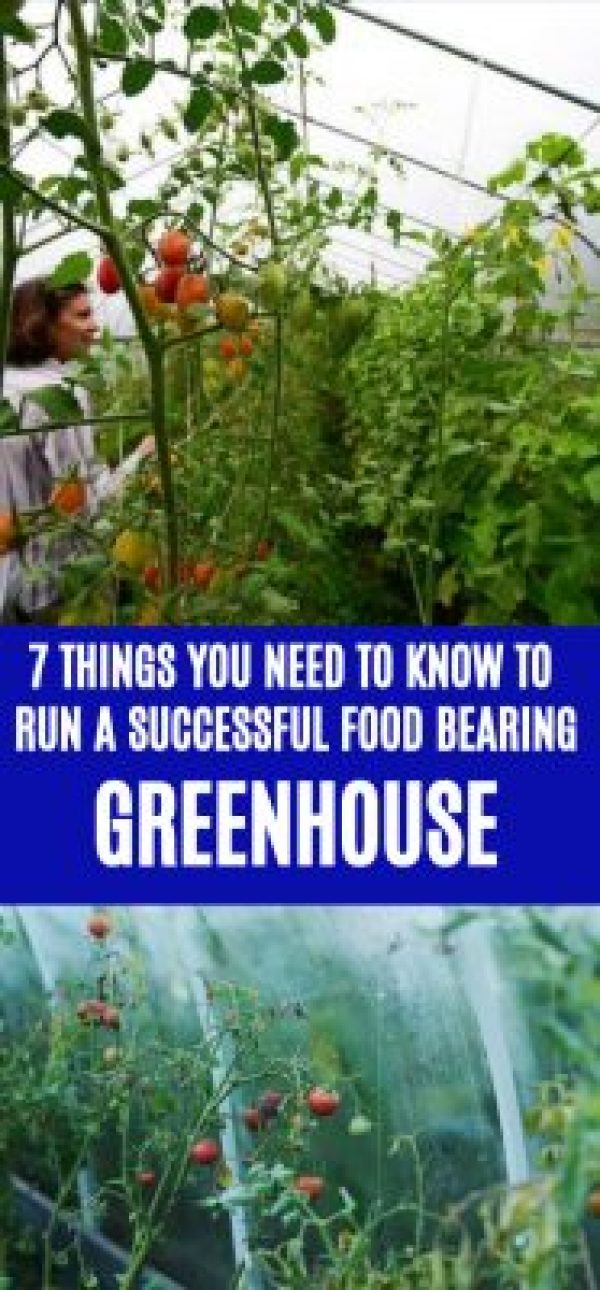 How to run a greenhouse