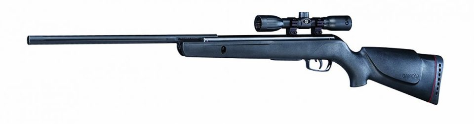 Gamo Varmint air rifle review