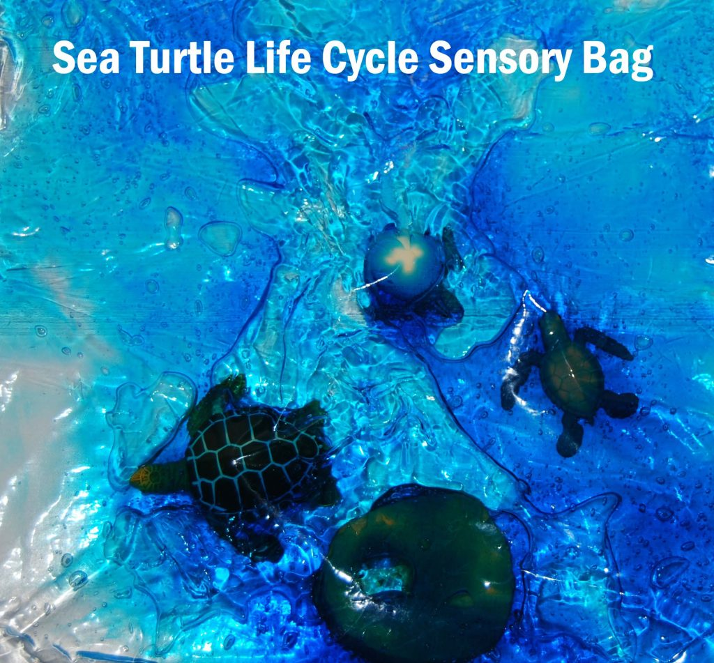 Ocean Theme Activities For Preschool Sea Turtle Life