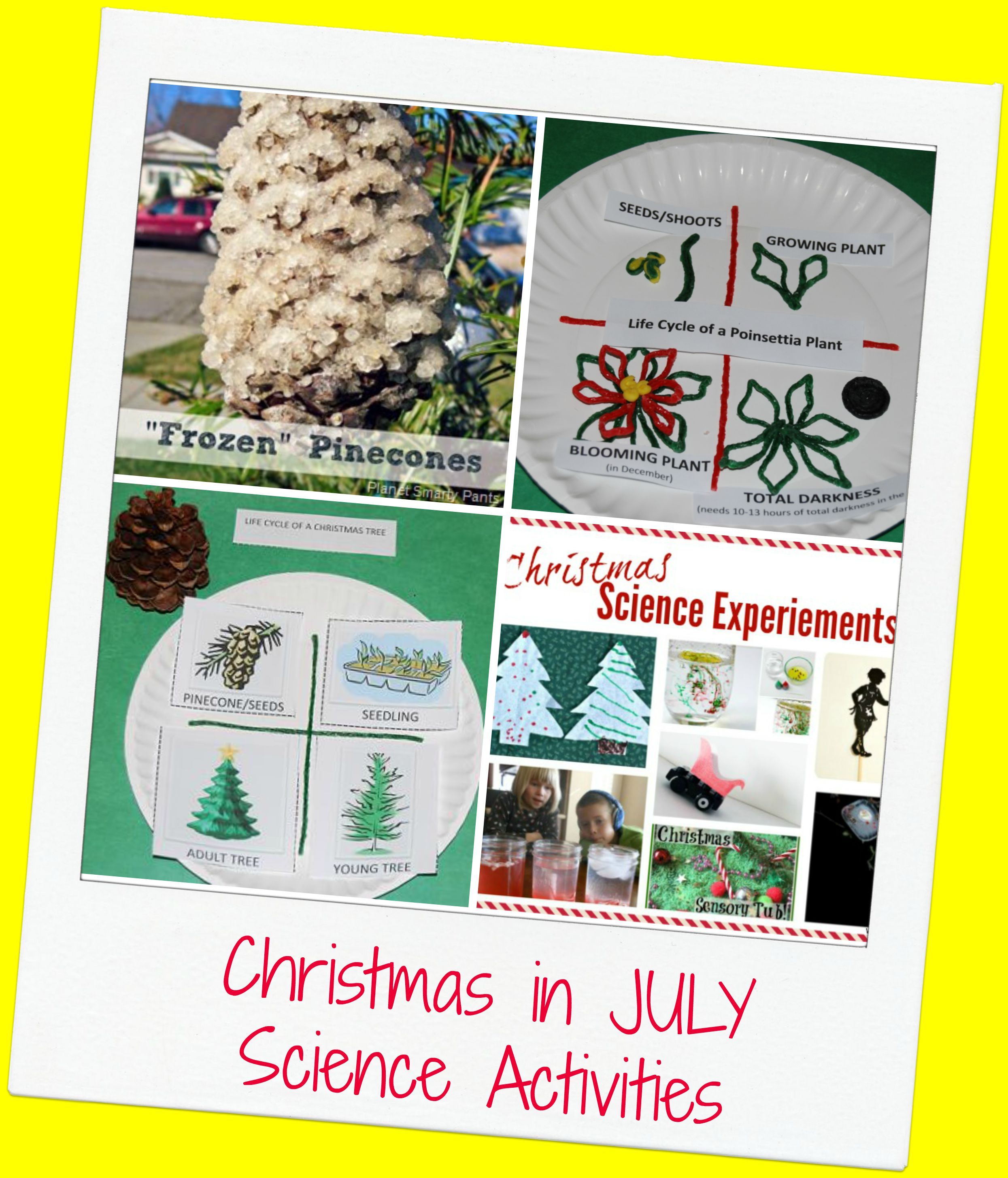 Christmas In July Science Activities For Preschool The