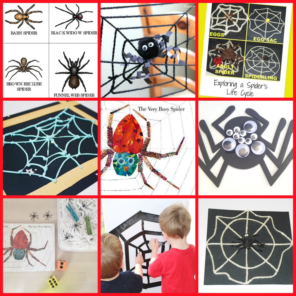 Eric Carle Author Study The Very Busy Spider Activities