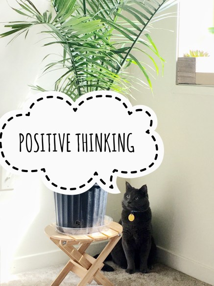 Positive thinking with Friday