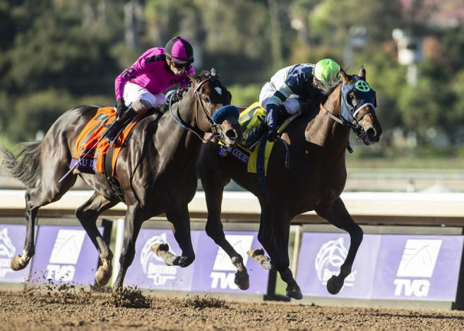 San Vicente Stakes Preview Can Nadal Keep Up With Storm The Court The Pressbox