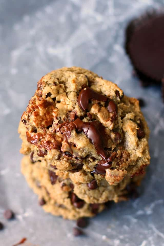 Chewy, gooey, chocolatey and delicious sunbutter cookies are made extra special with the additon of chocolate chips and suncups.